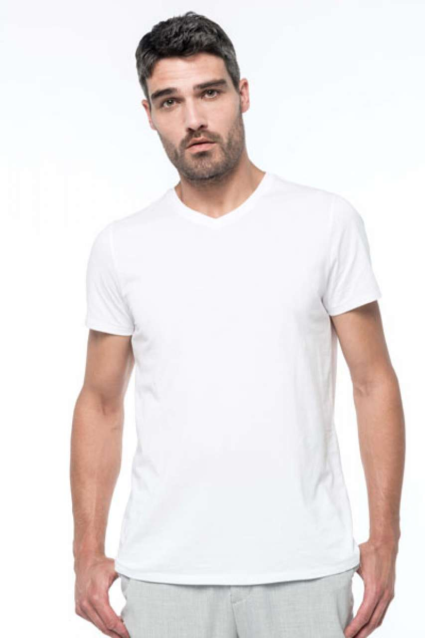 MEN'S SUPIMA®  V-NECK SHORT SLEEVE T-SHIRT